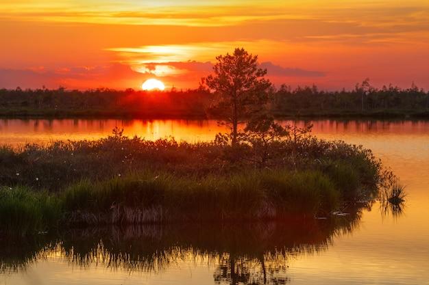 Закат на уникальном болоте ельня (беларусь)