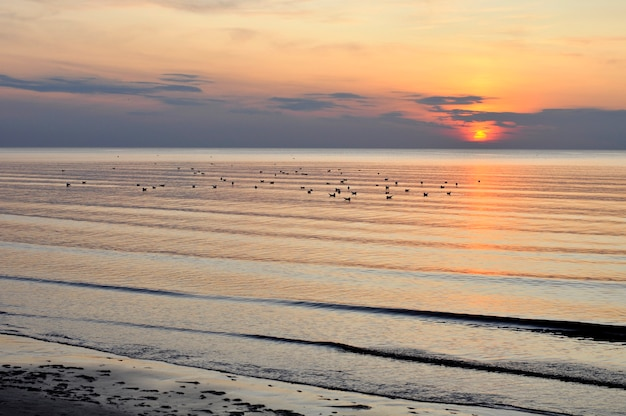 Sunset on baltic sea beach, jurmala latvia.sunset on baltic sea beach, jurmala latvia.