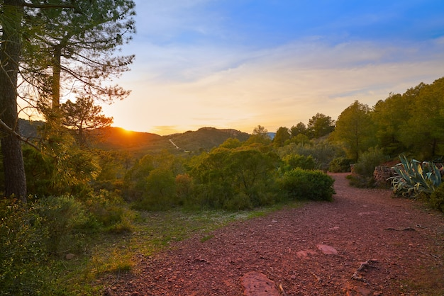Sunset at calderona sierra of valencia