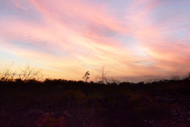 Sunset in floriano piaui northeastern brazil
