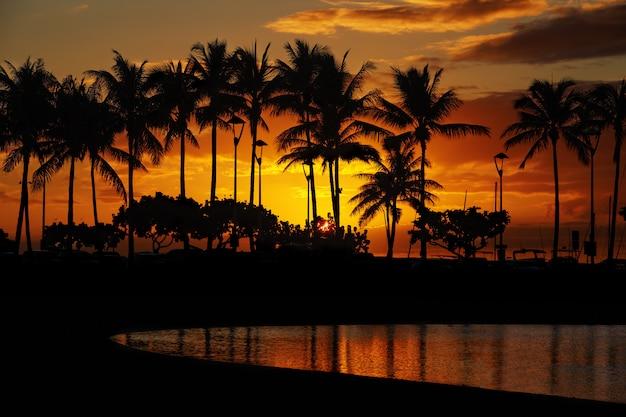 ワイキキビーチ、ホノルル、オアフ島、ハワイからの夕日