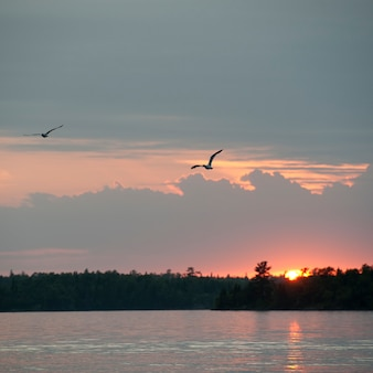 Sunset horizon over lake of the woods, ontario