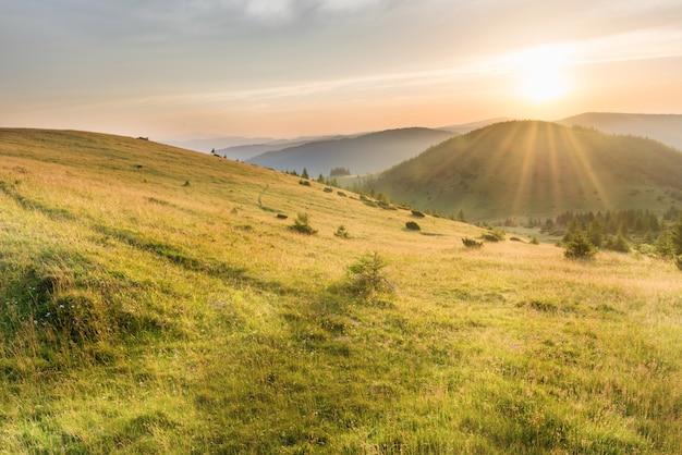劇的な空に森、緑の草、大きな輝く太陽と山の夕日
