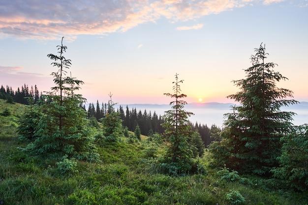 山の風景の夕日。劇的な空。ウクライナヨーロッパのカルパチア。