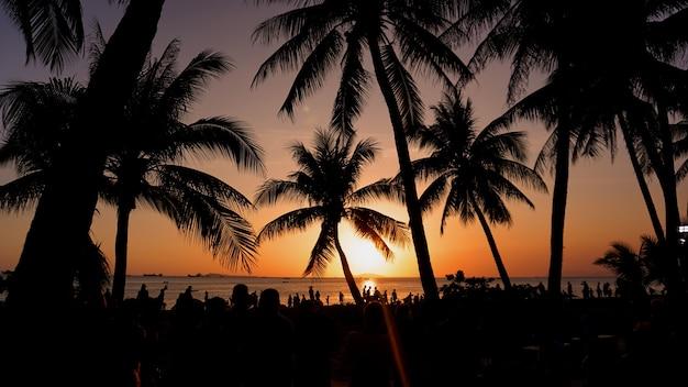 夕日の風景。ビーチの夕日。サンセットトロピカルビーチ、中国のヤシの木のシルエット