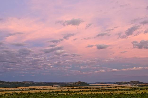 セルンゲティ国立公園の日没の風景