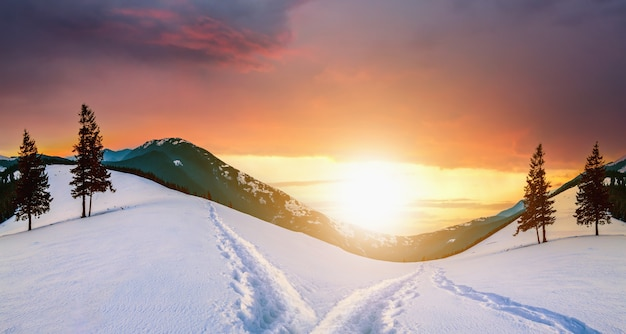 冬の活気に満ちたカラフルな夕方の空の下で山の丘とトウヒの木と雪の谷と夕日の風景。