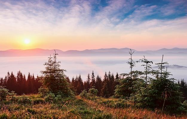 Sunset in the mountains landscape. dramatic sky. carpathian of ukraine europe.
