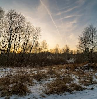 Закат на опушке леса поздней осенью. ленинградская обл.