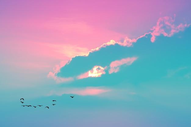 夕方の夕日空の明るいパステルカラーの雲と家に飛んでいる鳥