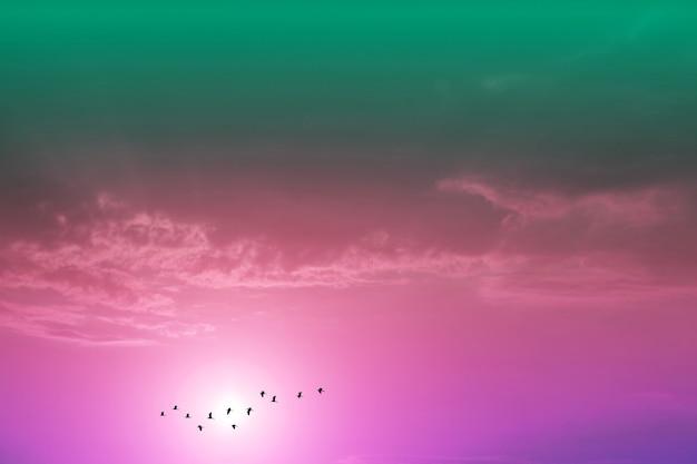 夕方の夕日空に紫色のパステルカラーの雲と家に飛んでいるシルエットの鳥