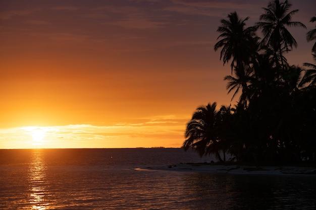 Закат на острове тропического моря с пальмами летние каникулы тропический курорт и путешествия ...