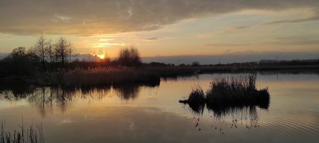葦のある湖に沈む夕日