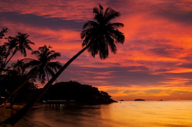 熱帯の海の岩の多い海岸に沈む夕日