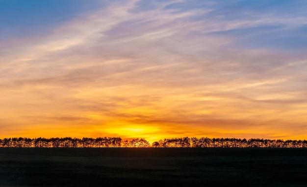 日没または日没は、地球の自転の結果として、地平線の下の太陽が毎日消えることです。地平線上の森