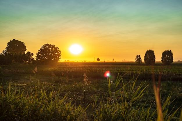 여름 기간에 시골 들판의 일몰 오렌지