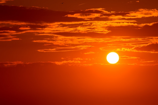 Sunset orange sky background at evening