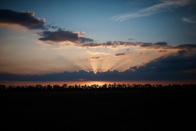 トウモロコシ畑、雲、雲に沈む夕日、太陽光線が通り抜ける
