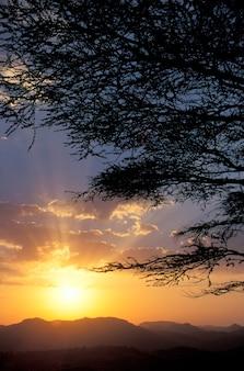 에티오피아 초원에 일몰