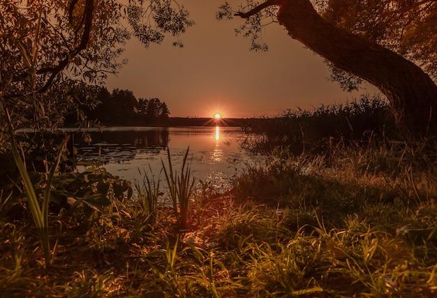 Закат над водой с отражением и солнечными лучами на природе летом с деревьями и травой, спокойный мир ...