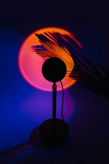 어두운 배경에 야자수 잎에서 노란색 빛과 그림자가 있는 일몰 프로젝터 램프.