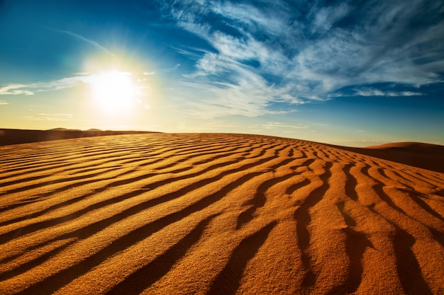 Sunset in the sahara desert.