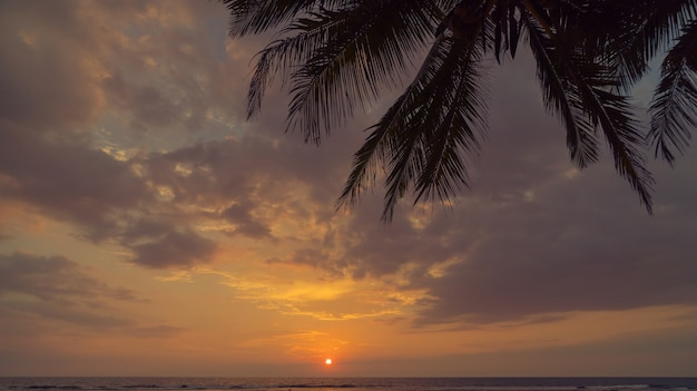Sunset on the shore of the indian ocean.