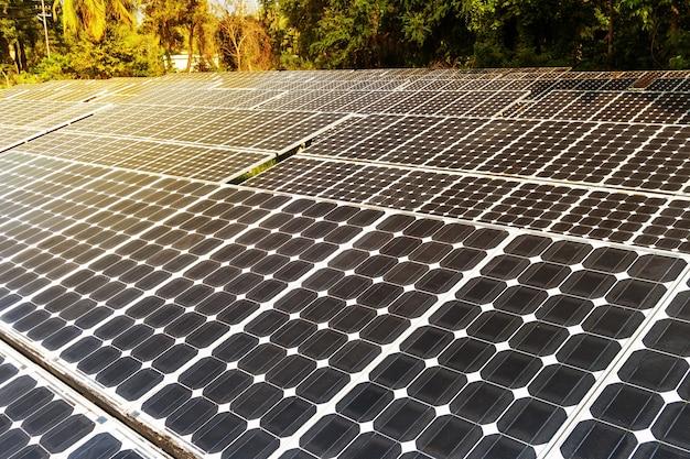 Закат под солнечными фотоэлектрическими батареями. солнечный свет на солнечной батарее черный в джунглях