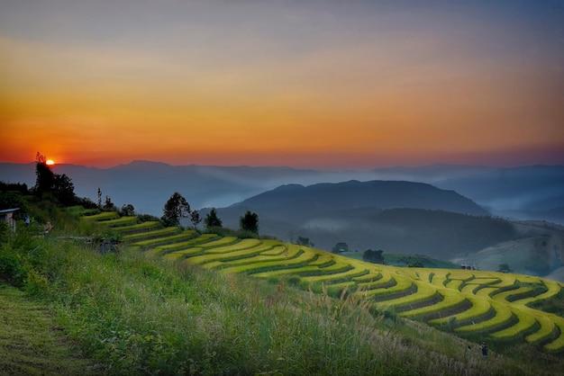 チェンマイのメーチェムでのタイ北部の稲作の夕日の眺め