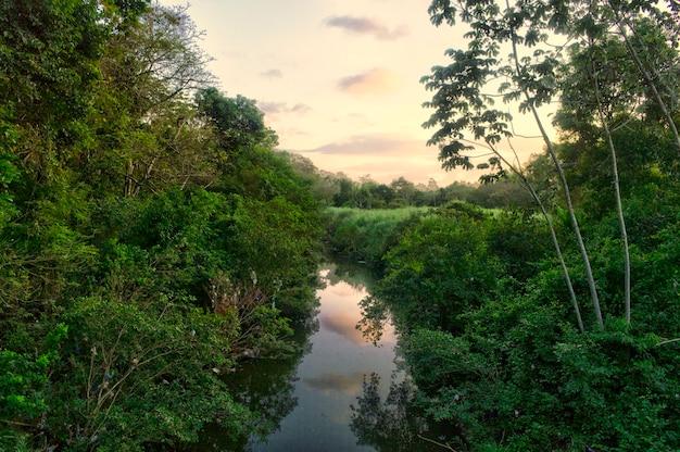 Закат с естественным ландшафтом реки посреди леса и растительности в панаме