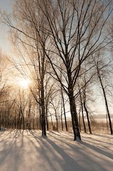 Закат с оранжевыми оттенками в зимнее время года