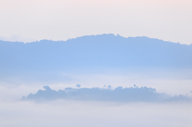 Sunshine and clouds on the morning mist at phu lang ka, phayao, thailand