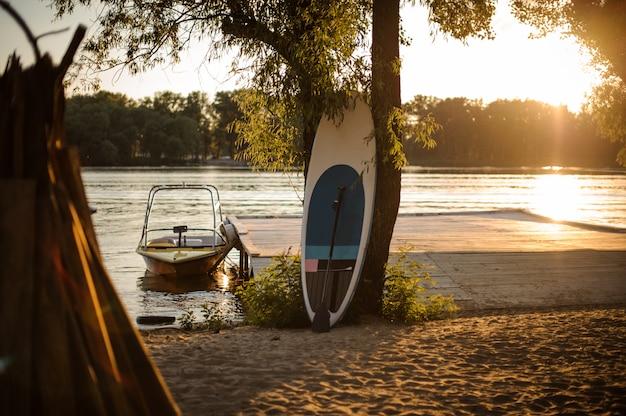 湖畔の木の近くにsupボード立っています。