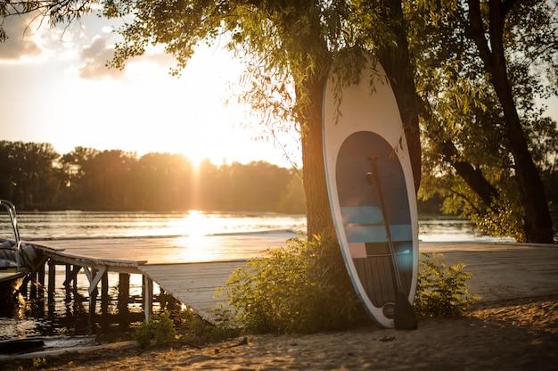 夕日の湖畔の木の近くのsupボード立っています。