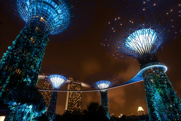 Supertree garden at night in garden by the bay, singapore