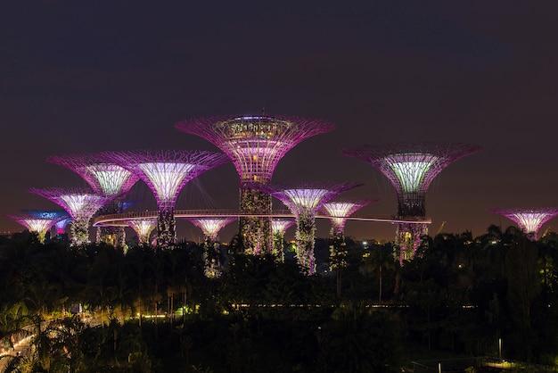 Supertree grove в сингапуре