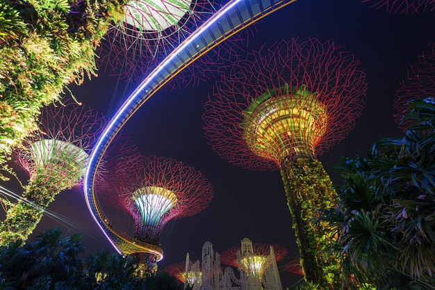 Supertrees at gardens by the bay. the tree-like structures are fitted