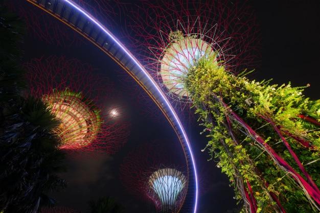 Сингапурские supertrees в саду у залива в заливе южный сингапур.