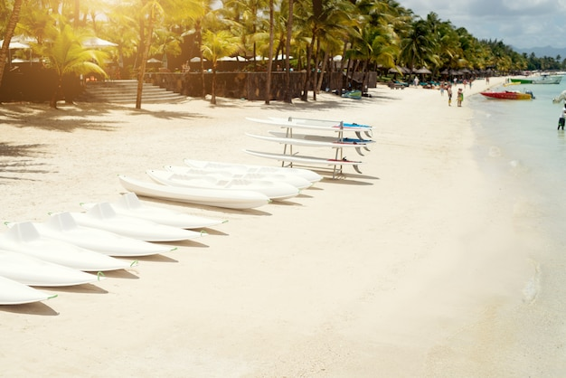 Surf boards at beach in a row ready for surfers. tropical sunny day at mauritius.