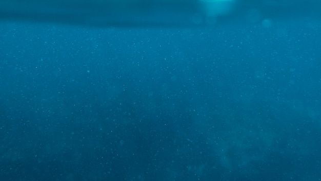 Surface blue underwater with plankton in tropical sea background