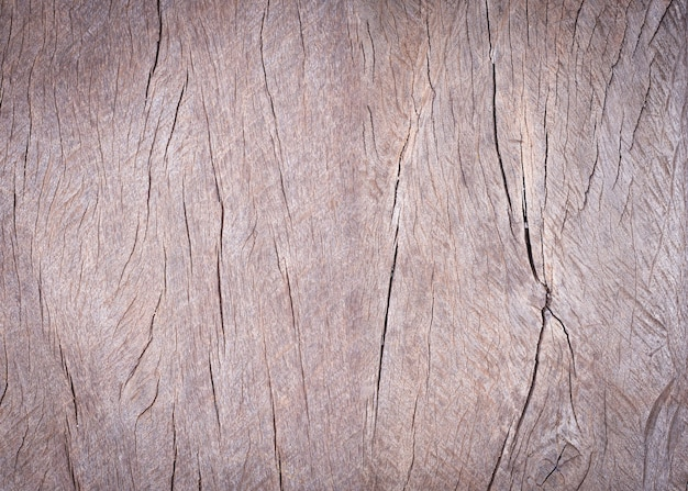 Surface of crack old wood texture. vintage timber textural background