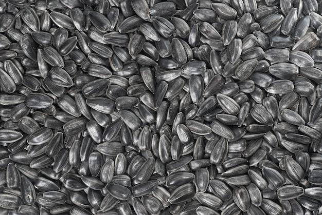 黒いヒマワリの種の表面