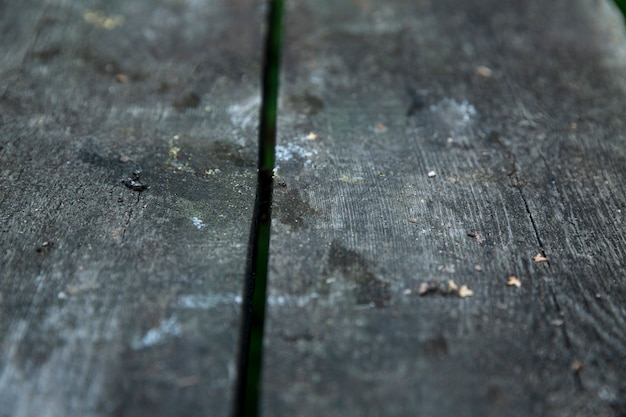 Surface of an old gray wooden table. close-up. selective focus. background. space for text.