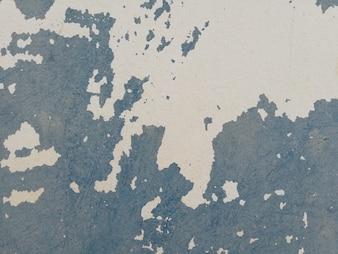 壁の表面の塗料が損傷している