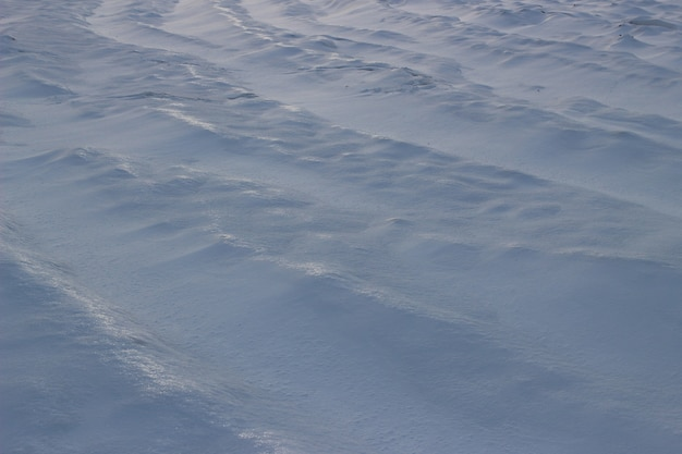 The surface of the snowy notes