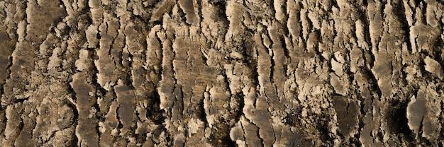 砂と土の緩い表面からの表面テクスチャ