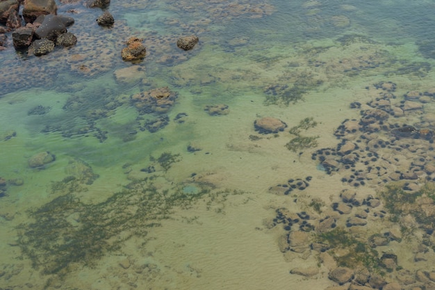 Surface of water in shallow water. stones under the water.