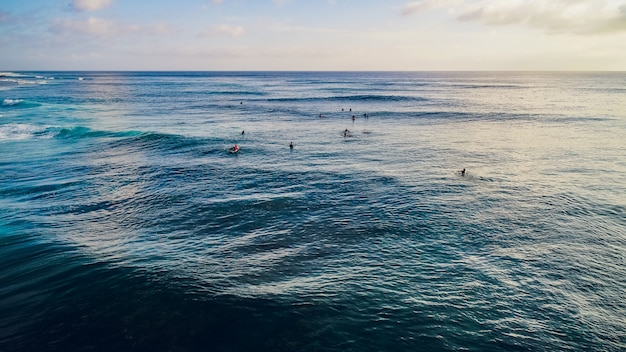 Surfer ride on waves in ocean sunset, top view