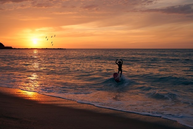 Surfer surfing a wave with the sun setting and birds heading for the sun
