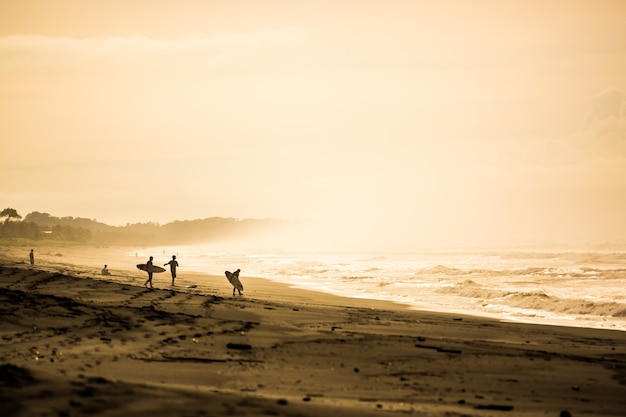 Surfers in the dawn at playa jaco, costa rica